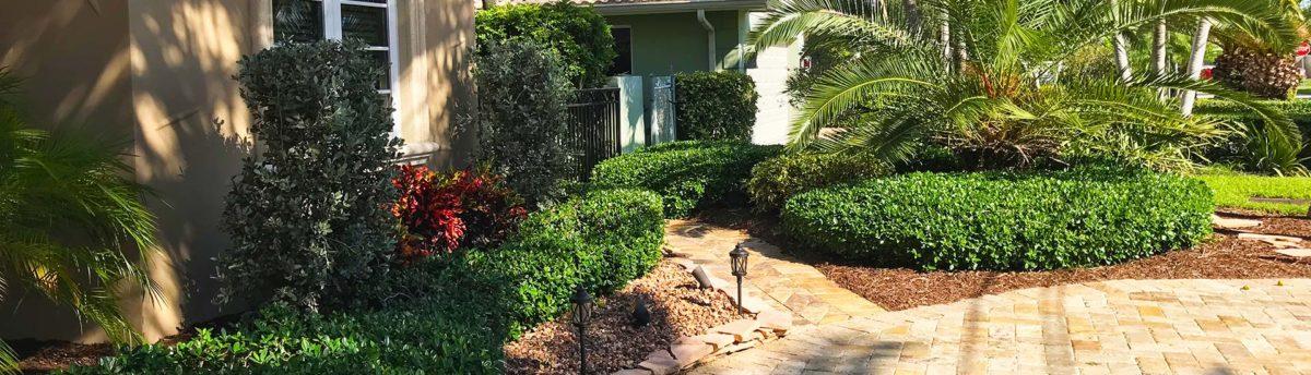 Landscaper in Boca Raton